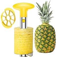 SameTech Strumento per sbucciare ananas e per rimuoverne il torsolo  in acciaio INOX  strumento per la cucina facile da usare