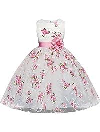 4260118f3873 AnKoee Bambina Filati Netti Ricamo Fiore Vestiti da Cerimonia Eleganti  Senza Maniche Matrimonio Partito Comunione Abiti