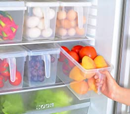 Vishesh Shopping Plastic Airtight and Reusable Fridge Container Organizer Cover Fruits Vegetable Storage Box with Handles, (VS0047)