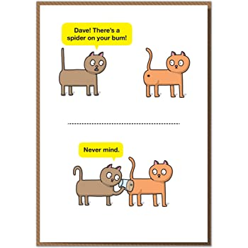 Dave Theres A Spider On Your Bum Funny Birthday Card Amazonco