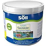 Söll 10071 Dr. Roth's vijverhelder microbiologische vijverreiniging en algenprofylaxe 500 g - schadelijke organismen voor nat