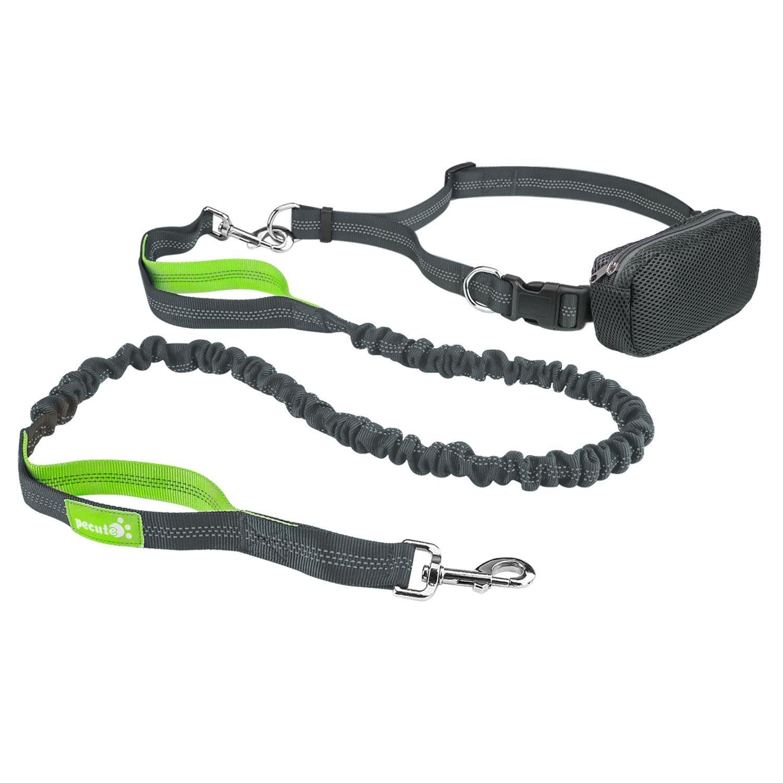 Pecute Manos Libres Correas para Perros con Cinturón y Estuche de Cremallera Estirable y Amortiguador de Chouque 1.5M (Verde y Gris)