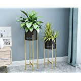 Ezzu Crafts Set of 2 Modern Plant Stand- Set with Tall Metal Stand, Decorative Standing Flower Succulent Pot Holder…