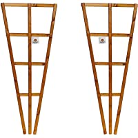 Set of 2 x Fan Wooden Wall Trellis - Timber Climbing Flower Plant Panel - Wood Climbing Rose Support Frame