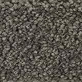 BODENMEISTER BM72182 Teppichboden Auslegware Meterware Hochflor Shaggy Langflor Velour grau 400 cm und 500 cm breit, verschiedene Längen, Variante: 4 x 5 m