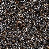 BODENMEISTER BM73501 Teppichboden Nadelfilz Nadelvlies Meterware Objekt schwarz braun 200 cm und 400 cm breit, verschiedene Längen, Variante: 3 x 2 m