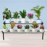TrustBasket 2 Step Stand for Multiple Plants and Pots Stand, Indoor Shelf Holder Rack, Gardening Stand,Indoor Outdoor (Black)
