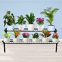 TrustBasket 2 Step Stand for Multiple Plants and Pots Stand, Indoor Shelf Holder Rack, Gardening Stand,Indoor Outdoor…