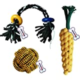 Petlicious & More Combo of 3 Durable Rope Toys for Puppy |Carrot Rope|2 Knot 2 Ring Rope|Rope Ball Rope Toys for Dogs & Puppi