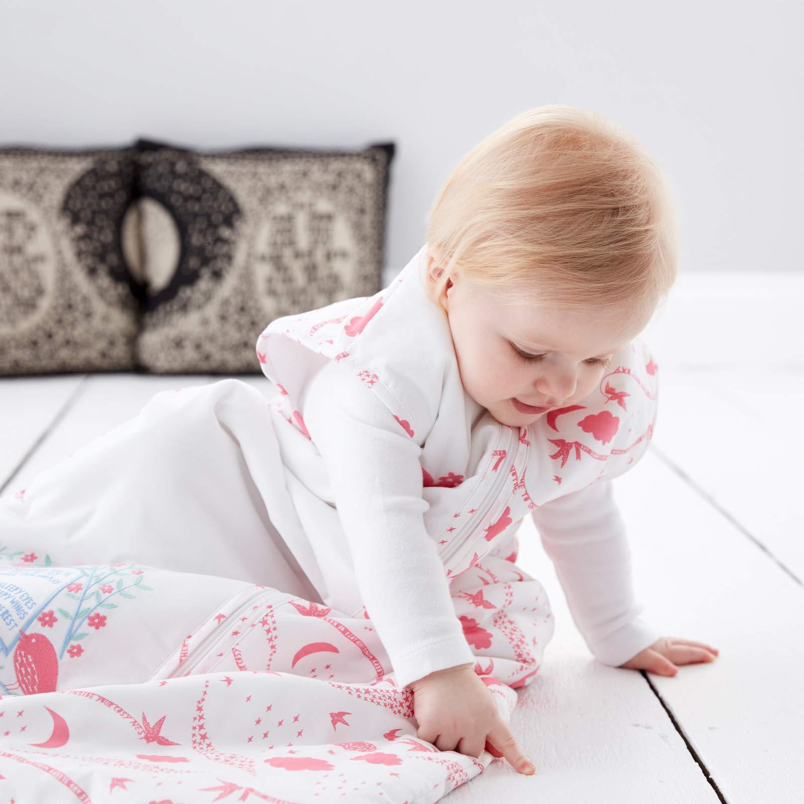 Saco de dormir 2,5 Tog, 6-18 meses Grobag Rob Ryan Spring Morning