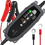 AUTOXEL Chargeur de Batterie Intelligent 6V/12V 3.8A, Compensation Automatique de la Température, Mainteneur Automatique, Bat