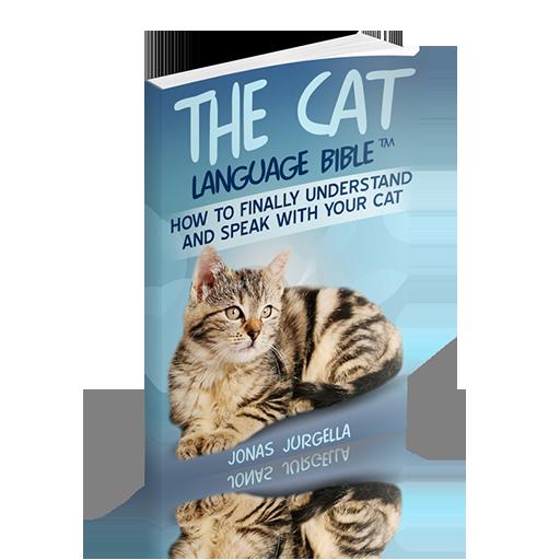 cat-translator-nyan-cat-cats-meowing-meow-cat-noises-cat-pictures-cat-simulator-cat-meow-sound-cat-s