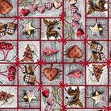 Weihnachtsstoff, Dekostoff Weihnachten, Landhaus Winter,
