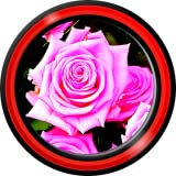 Rose Roses Live Wallpapers