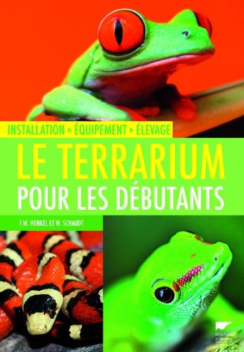 le-terrarium-pour-les-debutants-installation-equipement-elevage