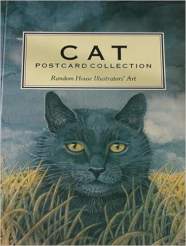 big cats a postcard book