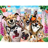 Kit completo de pintura de diamantes 5D perro, gato y loro con diamond painting bordado cuadros de punto de cruz suministros