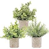 TURMIN Plantas Artificiales Plásticas de Maceta, Set de 3 Planta Artificial Decorativa con Césped Verde en Macetas Grises, Pl