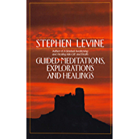 Guided Meditations, Explorations and Healings (English Edition)