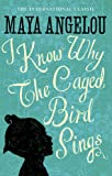 I Know Why The Caged Bird Sings: The international Classic and Sunday Times Top Ten Bestseller (Virago Modern Classics)