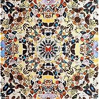 Damien Hirst–'farfalla'–Rara Edizione Limitata Gravure Stampa–C2004(Edizione di 500. Altri criteri, London)