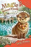 Chloe Slipperslide's Secret: Book 11 (Magic Animal Friends)