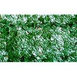 VERDELOOK Sempreverde® Point, Siepe Artificiale 1x3 m, Foglia pitosforo, per Decorazioni Giardino