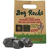 Dog Rocks Urinepleister Preventer 600g zak