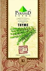 Pyramid Seeds Thyme