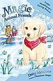 Poppy Muddlepup's Daring Rescue: Special 1 (Magic Animal Friends)