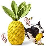 Rmolitty Giochi per Cani, Giocattoli per Cani per masticatori aggressivi, Gomma Durevole Giochi con Squeak Ananas per Cani di