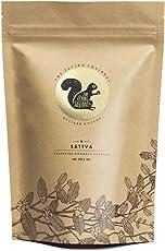The Flying Squirrel Coffee Sattva 100% Organic Coffee Powder, Medium Grind, 250g