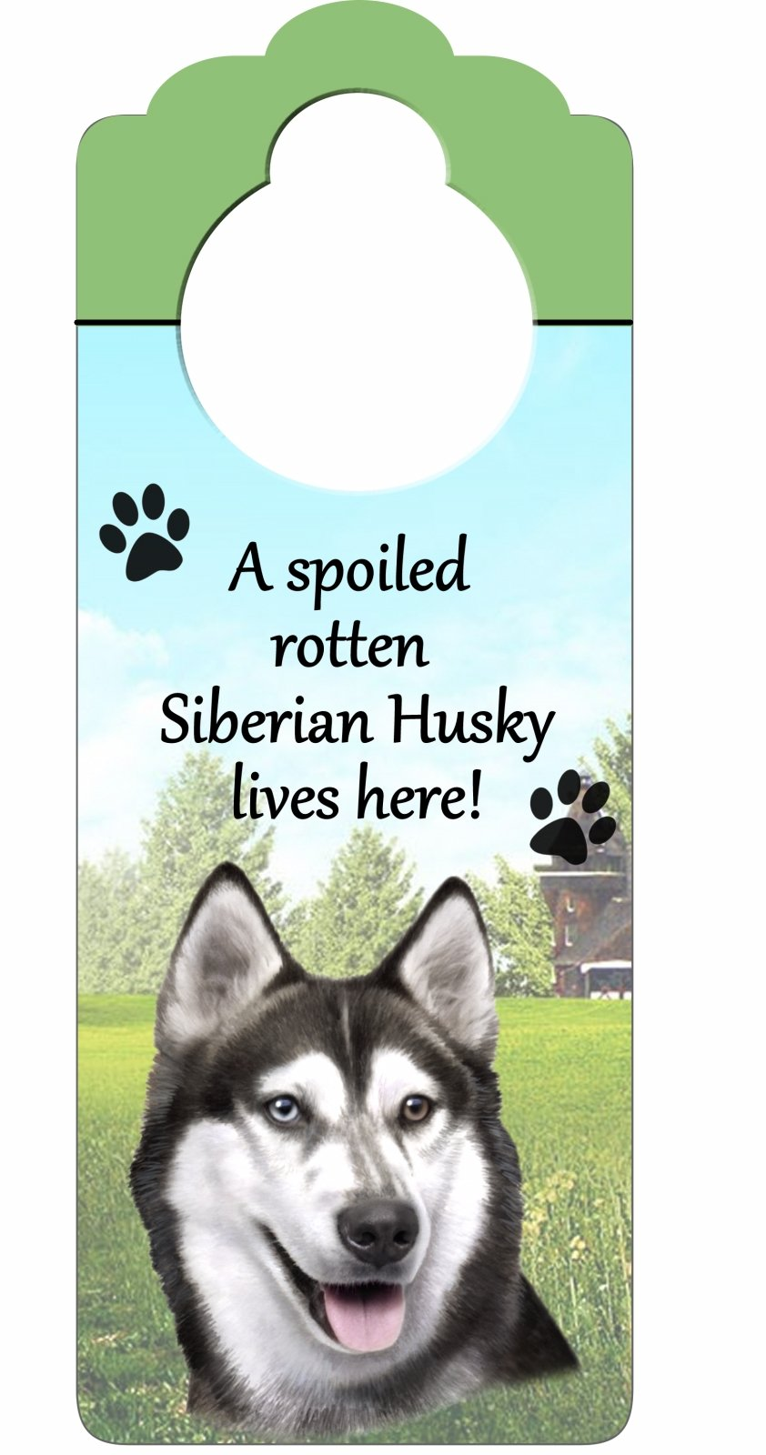 E&S Pets Siberian Husky Wood Sign A Spoiled Rotten Siberian Husky Lives Here with Artistic Photograph Measuring 10 by 4 Inches Can Be Hung On Doorknobs Or Anywhere In Home