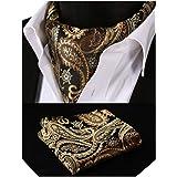 BIYINI Men's Cravats Paisley Floral Cravat and Handkerchief Ascot Tie Jacquard Woven Self Tie Cravats Business Formal Elegant
