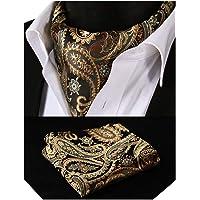 BIYINI Men's Cravats Paisley Floral Cravat and Handkerchief Ascot Tie Jacquard Woven Self Tie Cravats Business Formal…