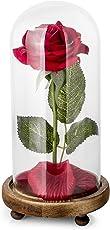 Silk Rosen, schöne künstliche Blumen, haben hinsichtlich des Aussehens und der Empfindung gute Übereinstimmung mit echten Blumen. Mit Geschenkverpackung. 43 cm lang