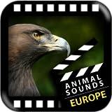 Meilleurs européens animaux Sons