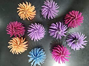 AquaNature Taiyo Soft Corals (Pack of 10)