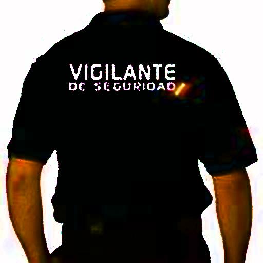 Vigilantes de Seguridad España