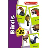 Flash Card - Birds