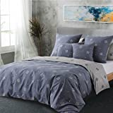 RUIKASI Parure de lit 220 x 240 cm - En coton gris géométrique - 1 housse de couette 220 x 240 cm + 2 taies d'oreiller 80 x 8