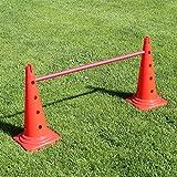 Bild: KombiKegelhürde 50 in 4 Farben mit Stange 100 cm für Agility  Hundetraining rot