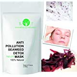 Anti Pollution Translucent alginate Facial peel-off Mask - Detox powder 10 treatments 200g (Seaweed Detox)