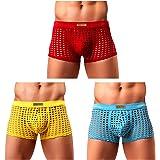 Arjen Kroos Men's Sexy Mesh Boxer Briefs Shorts Hipsters Trunk Underwear