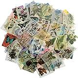 366 feuilles de scrapbooking vintage non répétitif pour album d'écriture bricolage artisanat quotidien recadrée rétro Scrapbo