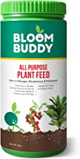 Bloom Buddy All Purpose Plant Feed 1Kg