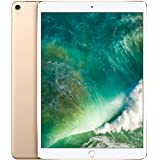 Apple iPad Pro (12,9 pulgadas y 256 GB con Wi-Fi) - Oro (Modelo Anterior)