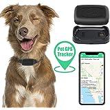 Zebbyee Localizzatore GPS per Animali Domestici, Localizzatore di Cani da Gatto in Tempo Reale e Monitor di attività, Disposi