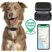 Zebbyee Localizzatore GPS per Animali Domestici, Localizzatore di Cani da Gatto in Tempo Reale e Monitor di attività…