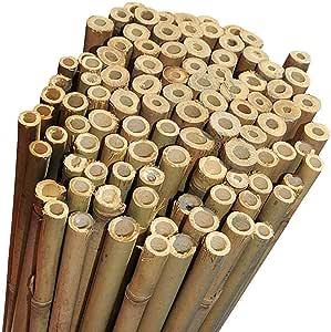 Canne di Bambu' Restenti e Naturali - Per Sostegno Ortaggi e Piante o Arredamento di design - Ideali per Pomodori, Rampicanti e per il tuo orto - Canna Bamboo (25 PEZZI - h.210cm / Ø18-20mm)